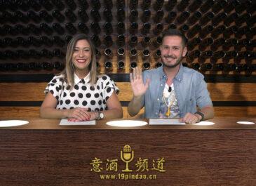 Tg Wine: vendemmia 2019, l'Italia è ancora il primo produttore al mondo di vino