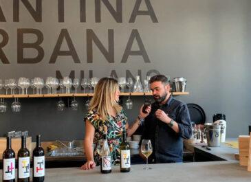 Cantina Urbana: c'è chi fa vino al centro di Milano
