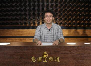 Tg Wine: dall'Università di Venezia una batteria alimentata con le fecce del vino, rivoluzionario sistema per sfruttare gli scarti della vinificazione.
