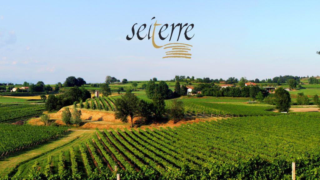 Wine Tasting: ecco il Rosso Toscana Igt, podere Sassoscritto, della Tenuta Seiterre